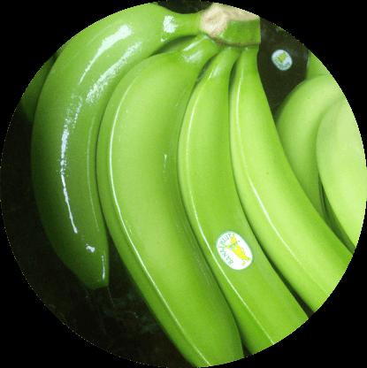 banana circle home